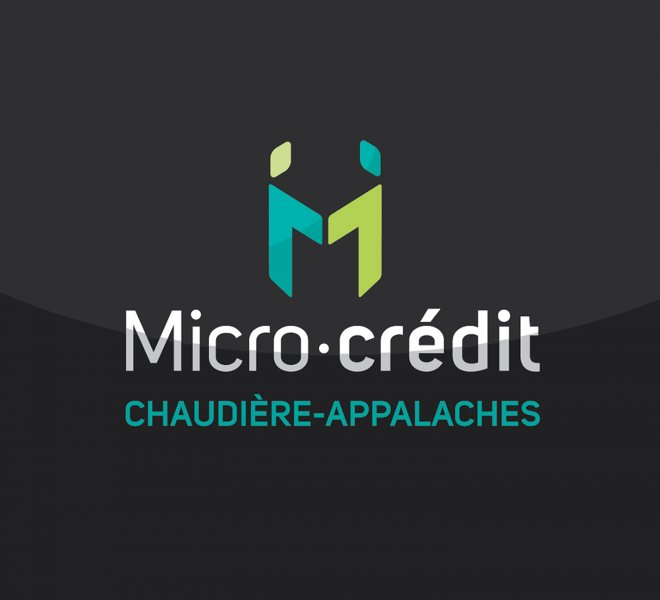 MicroCredit1